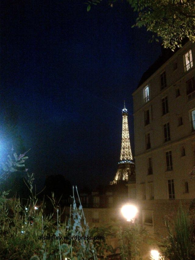 IMG-20140817-01766 Eiffel i'm in love