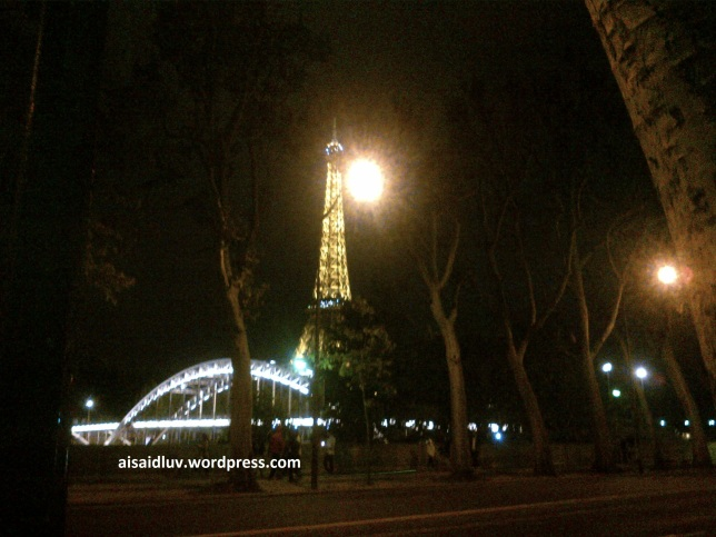 IMG-20140817-01769 - Eiffel Tower in the night