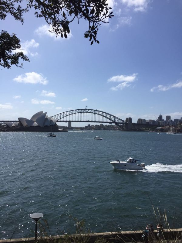 View harbour bridge and Sydney opera house_Australia